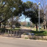 住之江公園(周辺)